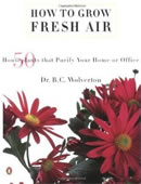 How To Grow Fresh Air